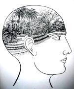 Waldgärten im Kopf