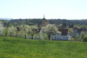 Großenbucher Kirche während der Kirschblüte