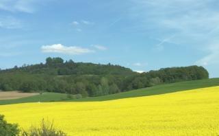 Blick auf den Veitsberg